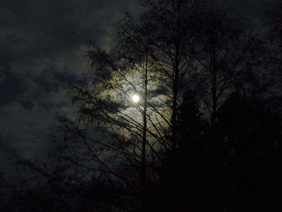 moon-54671_1280